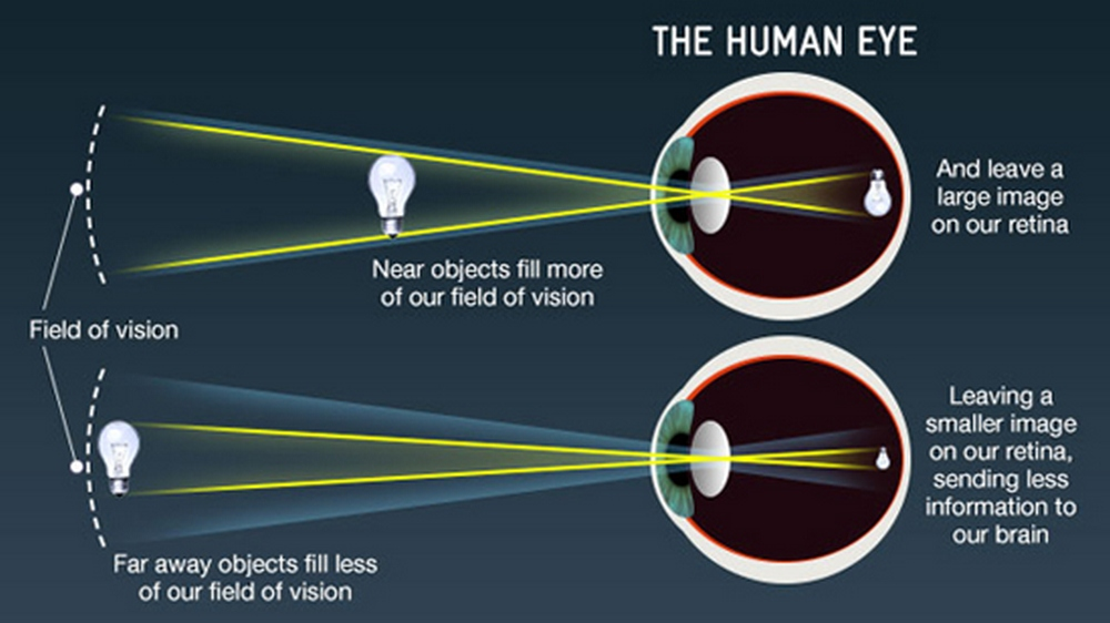 an explanation of the light of sight in this universe The eye is the organ of sight and is shaped as a slightly irregular hollow sphere various structures in the eye enable it to translate light into recognizable images.